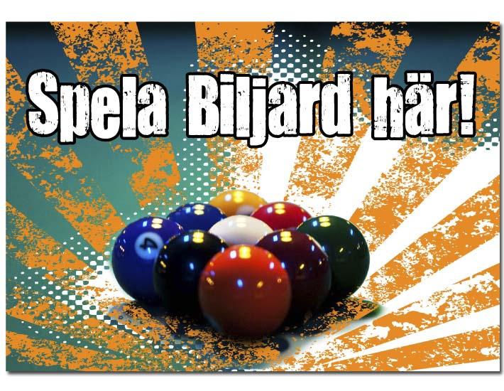 01_0006_BIljard-A3_02b